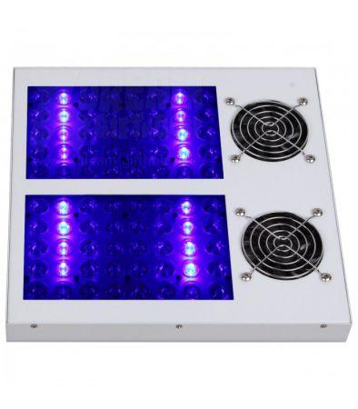 Pflanzenlampe LED | hydroca Blue Line 280