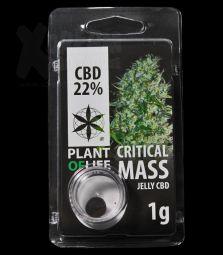 CBD Jelly Hash | Critical Mass | 22 %