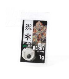 CBD Jelly Hash | Blueberry | 22 %