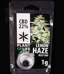 CBD Jelly Hash | Lemon Haze | 22 %