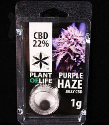 CBD Jelly Hash | Purple Haze | 22 %