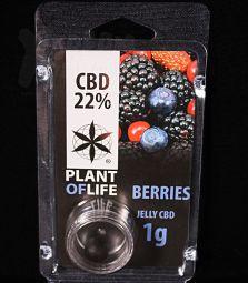 CBD Jelly Hash | Berries | 22 %