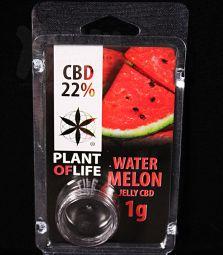CBD Jelly Hash | Watermelon | 22 %